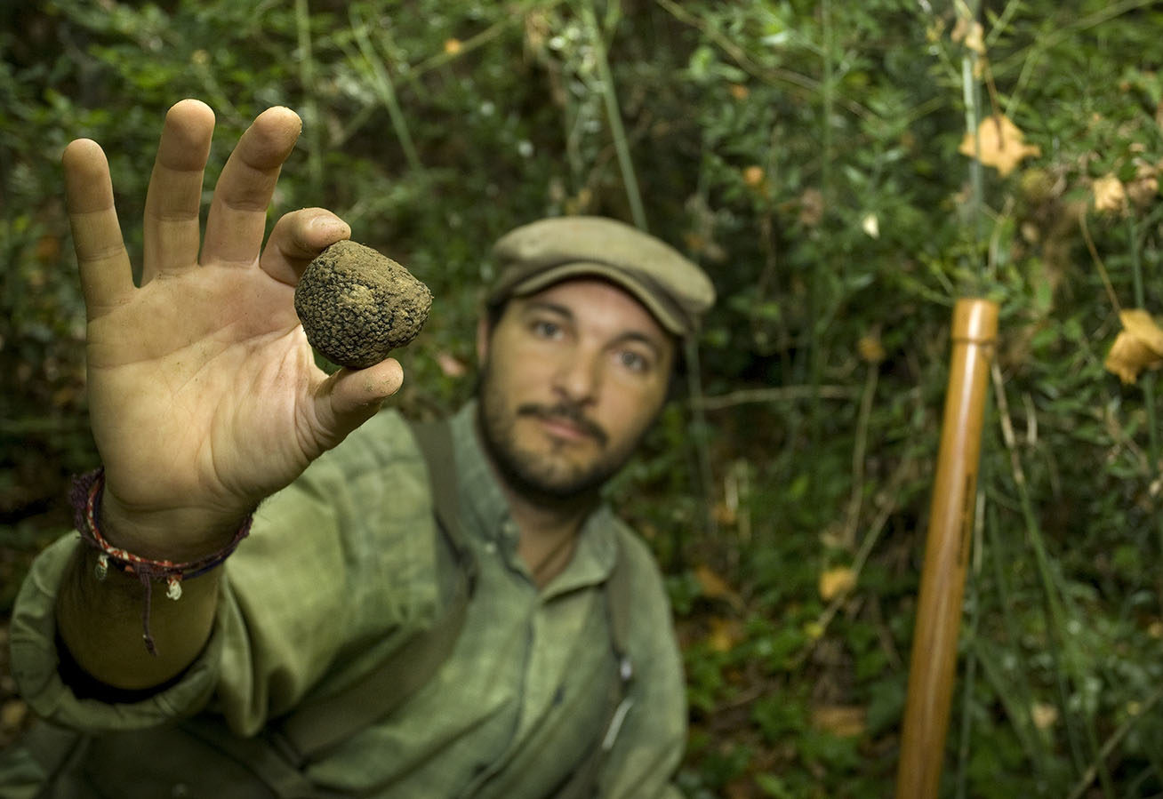 Authentic Experiences Truffle Hunting in Tuscany Italy with Class